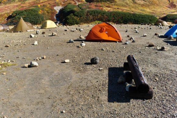 丸太がある場所にテント設営!ペグが差しやすい。
